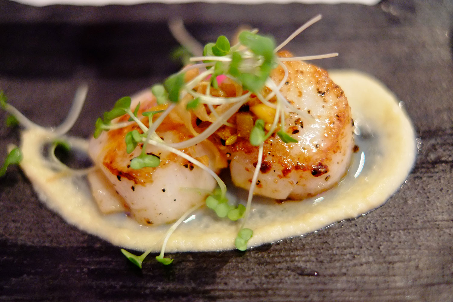 Seared Scallops. Photo: © Neil Hennessy-Vass