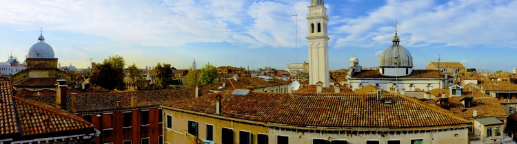 Panoramic roofscape