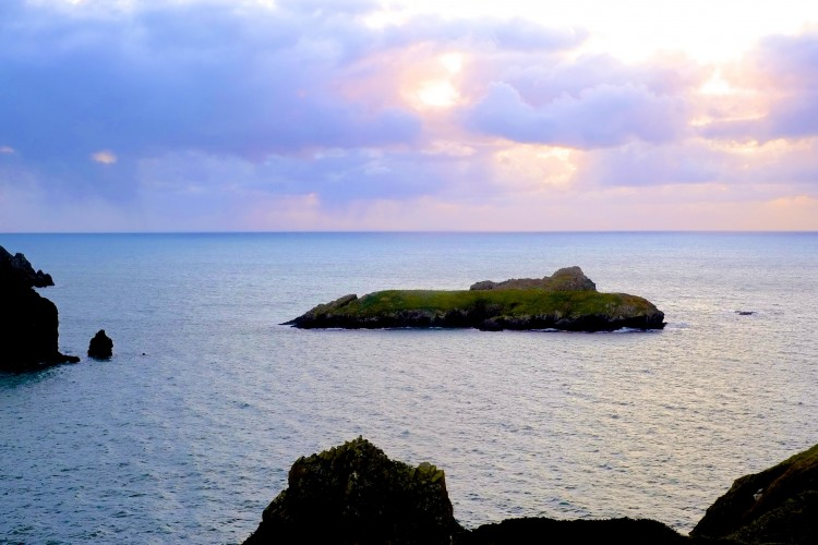 View from Mullion Cove 2