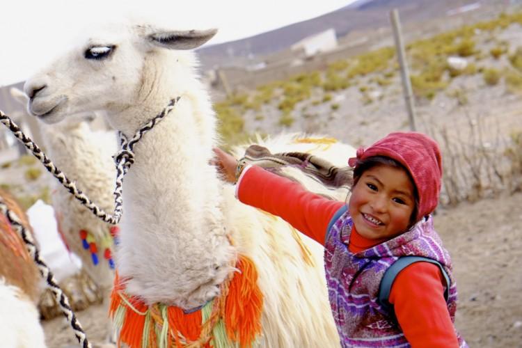 Child with Llama