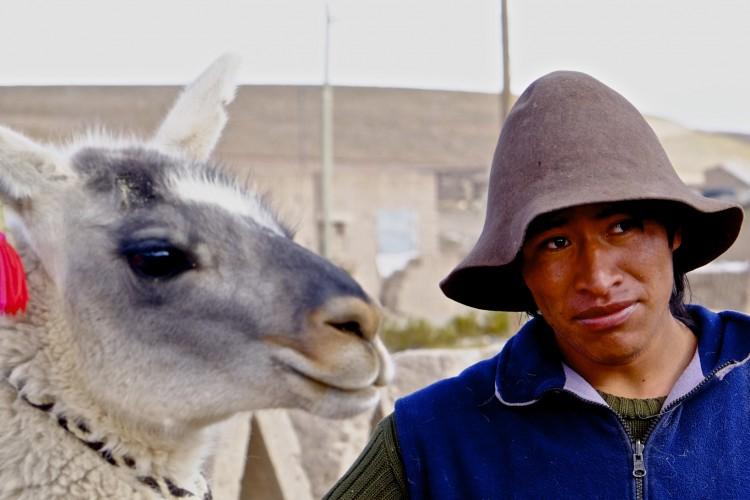 Llama Farmer 3