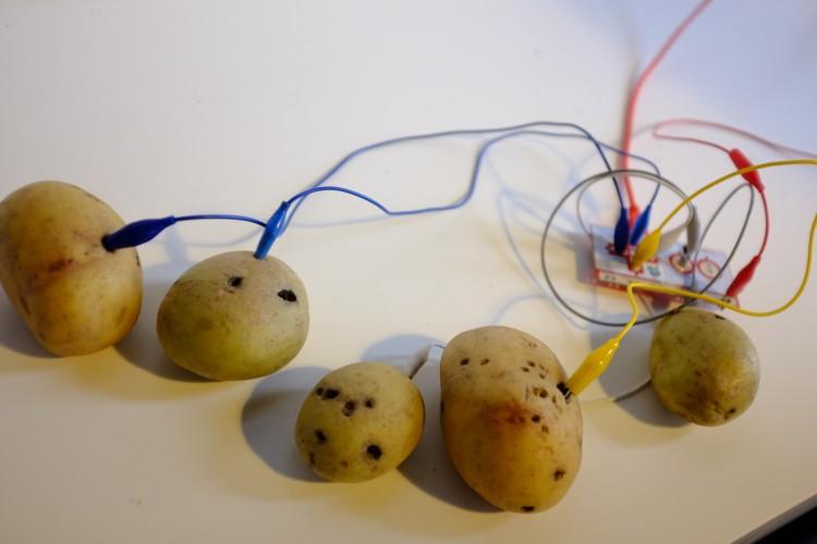 Potato Computer